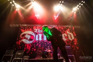 TheDamnedZenith2014-01