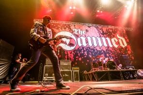 TheDamnedZenith2014-02