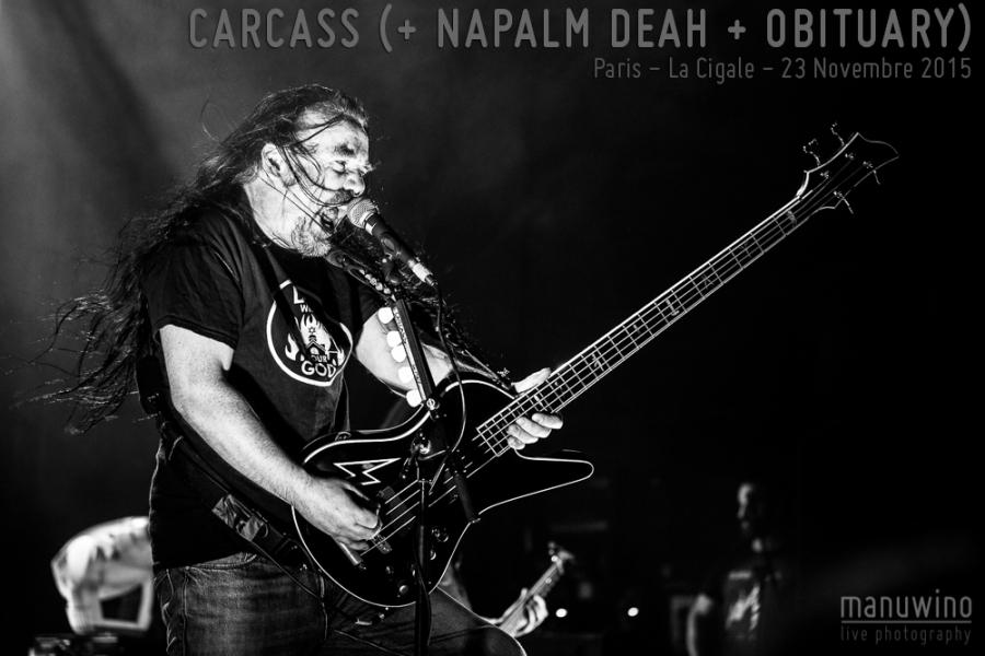 CarcassCigale-00